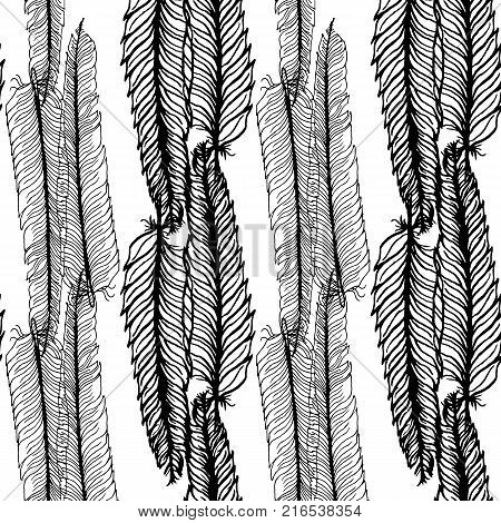 Seamless pattern with feathers on a white background