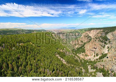 Large canyon and vast woodlands of Bighorn National Forest in Wyoming