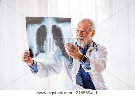 Senior doctor looking at chest x-ray in his office. Male doctor with smartwatch examining an x-ray.