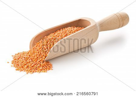 Raw red dried lentils in wooden scoop over white background