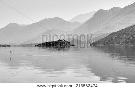 Reflections of misty mountains on water surface with a bird about to land, lake Skadar in Montenegro