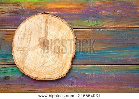 wood slice cross section. Saw cut wood on a beautiful multicolored wood background. Background, wood texture, free space for creativity