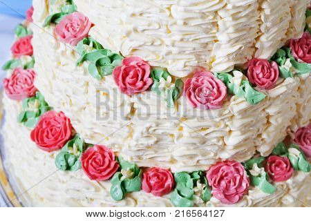 Cream cake close-up rose from a cream decor