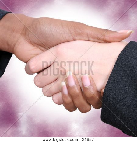 Female Handshake 02