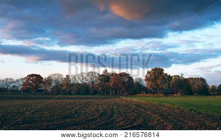 Pathway with fence in sunny autumn countryside. Geesteren Gelderland Netherlands. poster