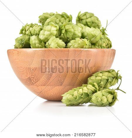 Fresh hops (Humulus lupulus) in wooden bowl isolated on white background. Pile of hops ingredient for brewery industry.