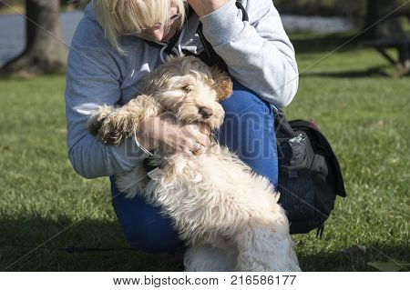 Woman playing with a cockapoo puppy outdoors on a sunny day