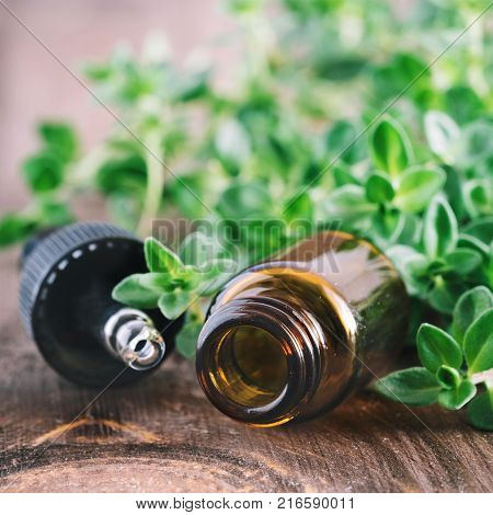 Organic essential thyme oil and pipette with green leaves of thyme Copy space.