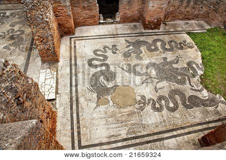 Ancient Roman Baths Of Neptune Mosaic Floors Ostia Antica Rome Italy