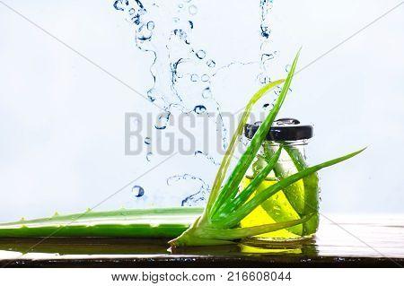 Aloe Vera In a glass Aloe Vera Splash.