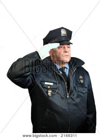 Police Salute