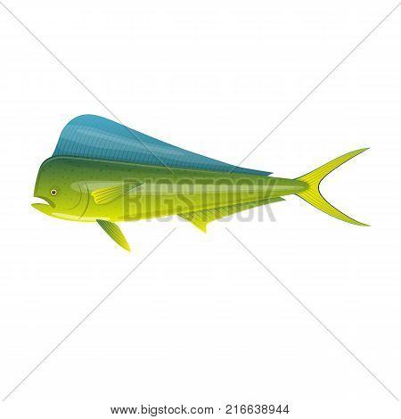 Sea fish. Beautiful, colorful ocean fish Dorado Mahi-Mahi. Fish and shellfish, eating, delicious menu, market fish to around the world. Vector flat illustration.