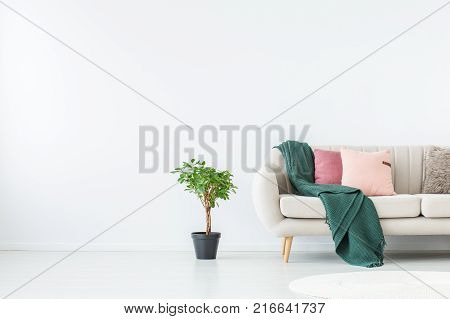 Blue Blanket On Beige Sofa