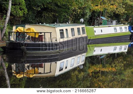 barges converted into houseboats moored on a canal near hebden bridge in yorkshire in woodland