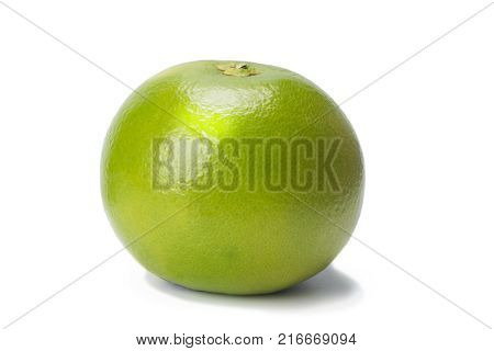 Sweetie green citrus fruit isolated on white with shadow