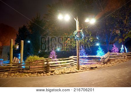 Four lights shining down on walkway with Christmas trees in the background