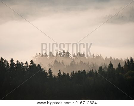 Autumn Sunrise. Deep Forest In A Beautiful Hilly Landscape Within Inversion Weather.