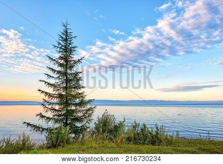 Lake Baikal. Cliff Scriper Early Summer Morning