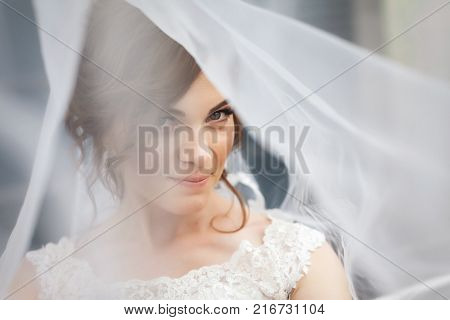 Portrait of pretty, young bride with white veil over her face. Concept of young gorgeous bride.