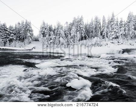 storforsen in winter, biggest waterfall in the north of sweden
