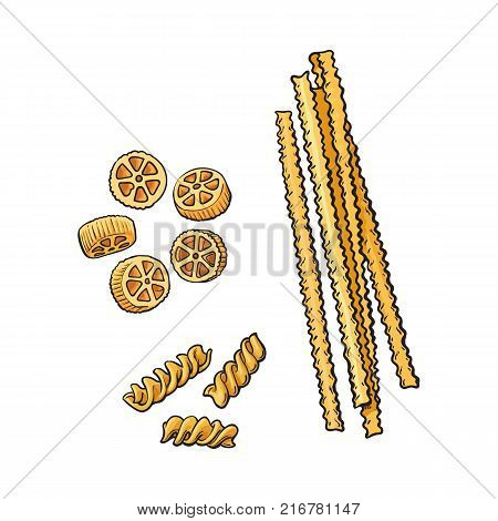 vector sketch hand drawn italian pasta types set. Rotelle, fusilli and rigatoni. Food elements for restaurant, cafe menu design. Isolated illustration on a white background.
