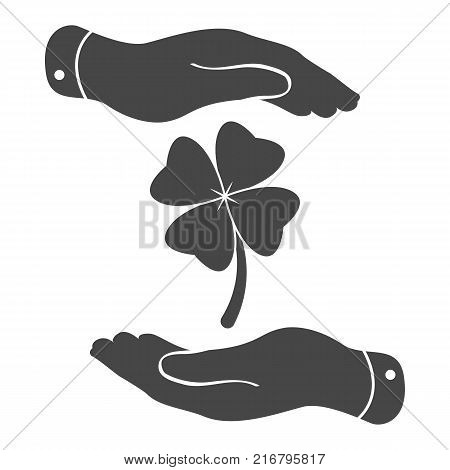 two hands protecting clover with four leaves sign icon on a white background. Saint Patrick symbol