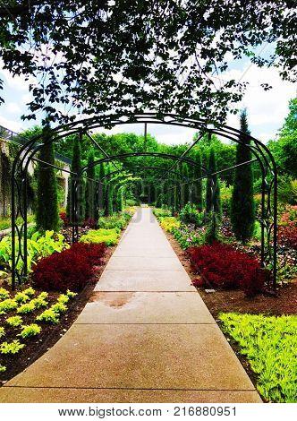 An entrance to a garden or perhaps an entrance to a new land