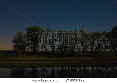 Trees on the shore of the lake under a starry sky with the constellation of Ursa Major over them
