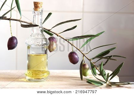 Olive oil in a still-life with a sprig of olive in the kitchen.