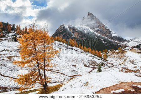 Mount Sass de Stria and stone trench from first world war on foreground, Falzarego path, Dolomites - Italy