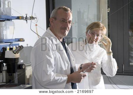 Work In Laboratory