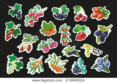 Set of Fruit Berry Stickers, Pins or Patches, Strawberry with Dewberry and Gooseberry, Blackcurrant with Raspberries and Blueberries, Watermelon and Redcurrant, Vector Illustration