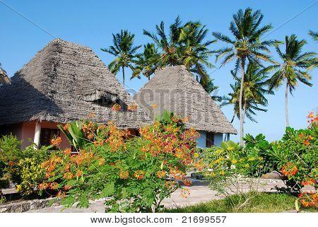 Zanzibar island,Africa