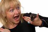 scared woman crying with horror holding little rat in her hand isolated on white poster