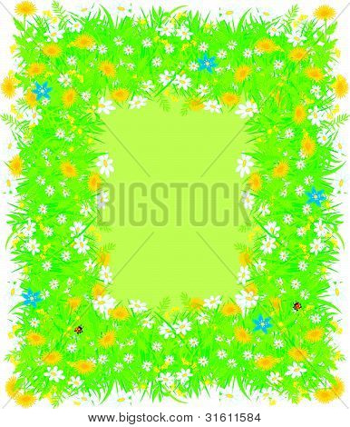 Border of flowers and grass