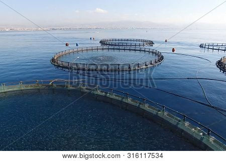 Fish Farm In The Sea, Fenced With A Round Net.