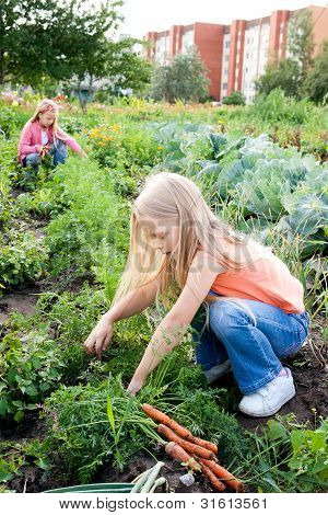 Young Girls Working In Vegetable Garden