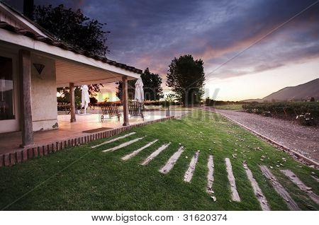 Sunset at a Vineyard