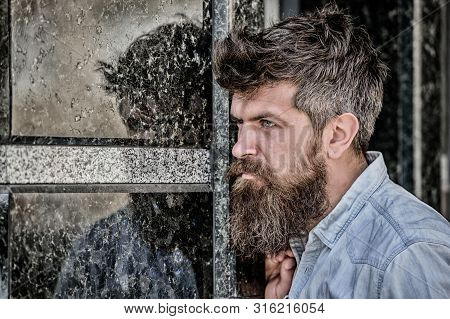 Beard Grooming. Beard Care. Masculinity And Manliness. Man Attractive Bearded Hipster Posing Outdoor
