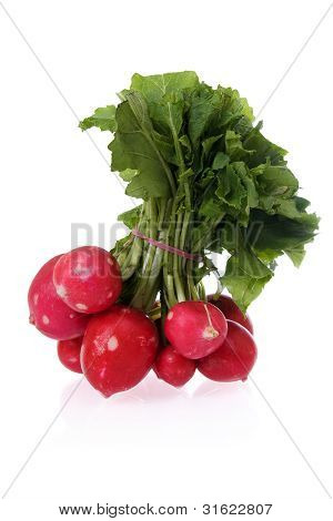 Ingredients: Radishes