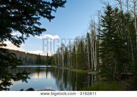 Pine Lake Vacation