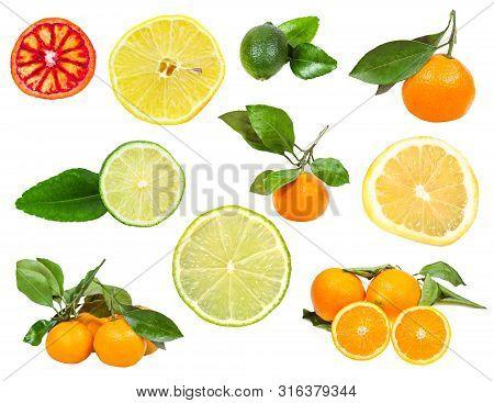 Set Of Various Fresh Citruses Isolated On White Background