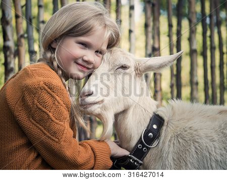 A Child And A Goat. Portrait Of A Girl With A Farm Animal On The Farm