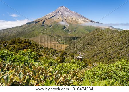 Egmont National Park With Dormant Stratovolcano Mount Taranaki In Distance