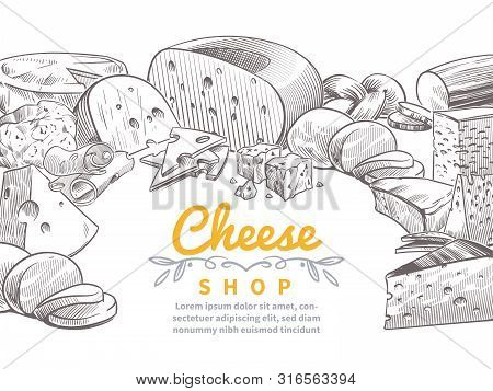 Sketch Cheese Background. Tasty Cheeses Brie, Feta And Parmesan Slices Gourmet Snacks. Doodle Sketch