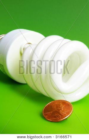 Closeup Bulb