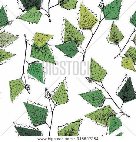Birch Leaves Pattern. Hand Drawn Green Birch Tree Branches, Birch Leaves. Vector Seamless Background