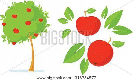 Apple Tree - Flat Design Illustration With Apple, Leaves And Tree