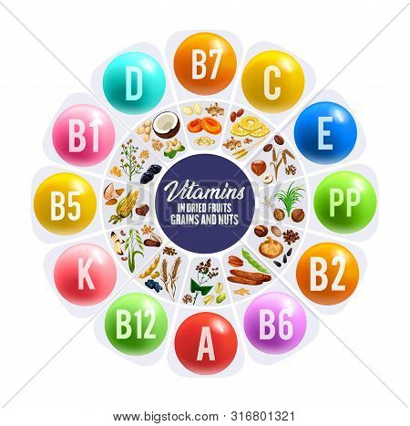 Dried Fruit, Nus And Grais Vitamins Round Chart. Nutrition Facts Vector Graph With Peanut, Date And