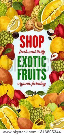 Exotic Fruit Shop Vector Poster With Tropical Berries Frame. Pomelo, Quince And Asian Jackfruit, Ack